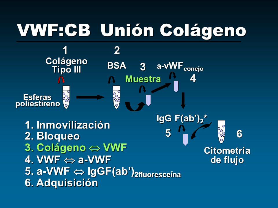 VWF:CB Unión Colágeno 1 2 3 4 1. Inmovilización 5 6 2. Bloqueo