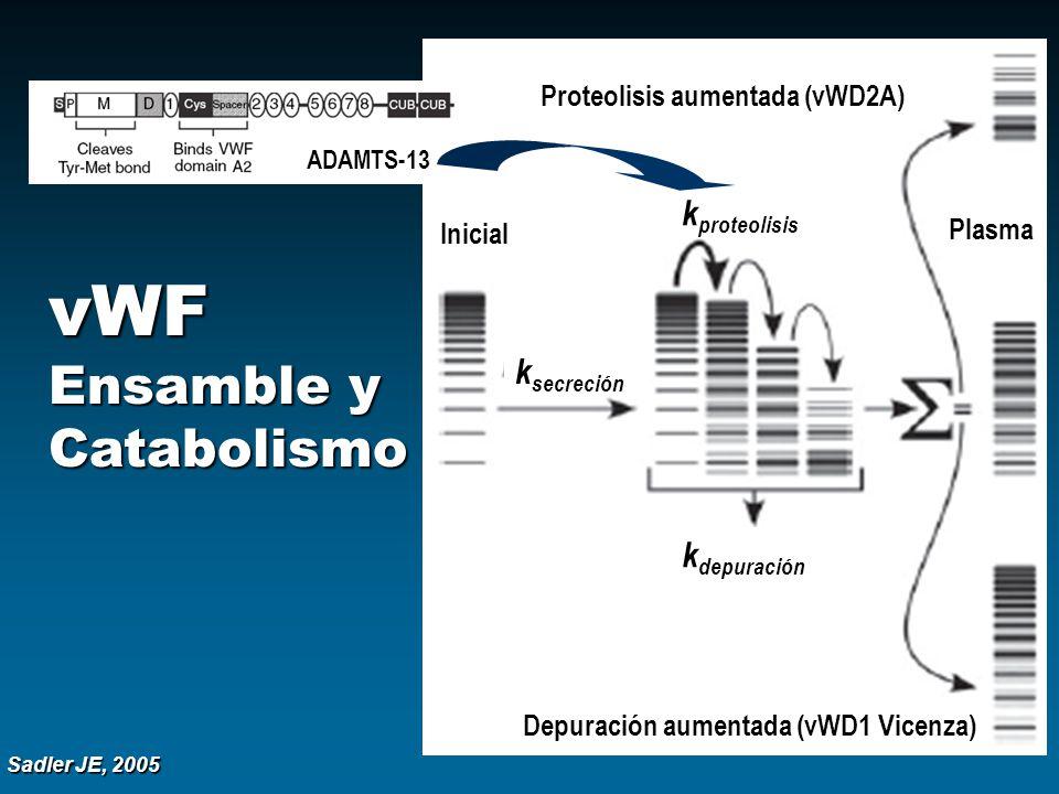 vWF Ensamble y Catabolismo