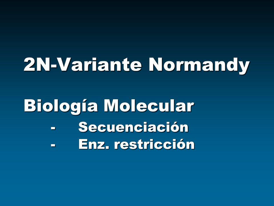 2N-Variante Normandy Biología Molecular. -. Secuenciación. -. Enz