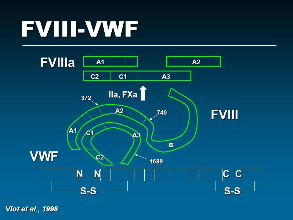 FVIII-VWF FVIIIa FVIII VWF N N C C S-S S-S IIa, FXa Vlot et al., 1998