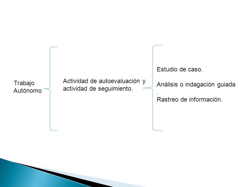 Estudio de caso. Análisis o indagación guiada. . Rastreo de información. Actividad de autoevaluación y.