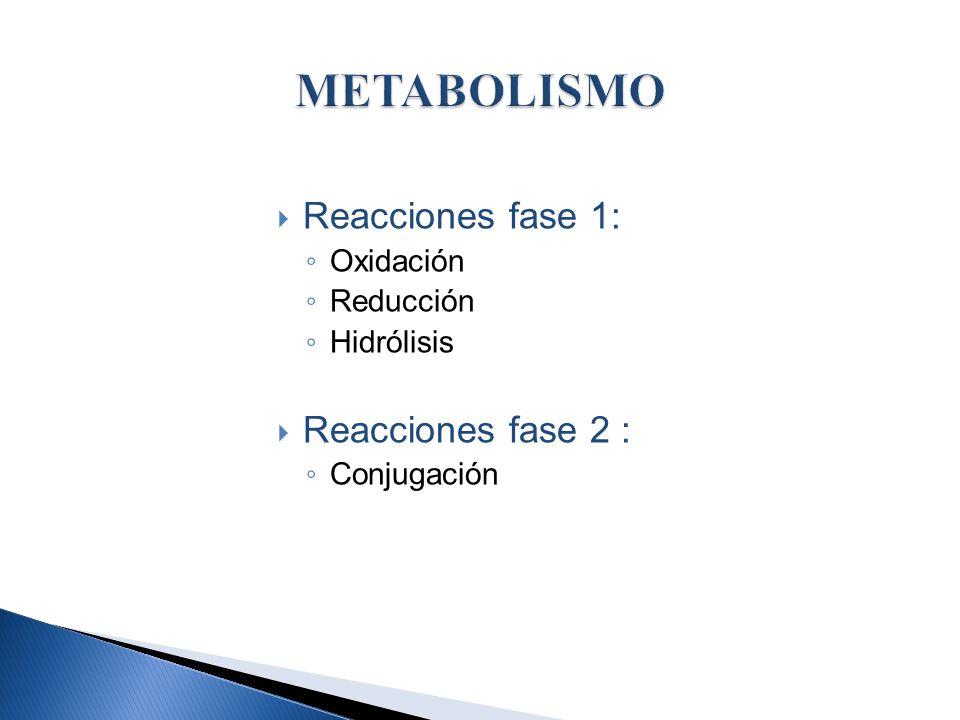 METABOLISMO Reacciones fase 1: Reacciones fase 2 : Oxidación Reducción