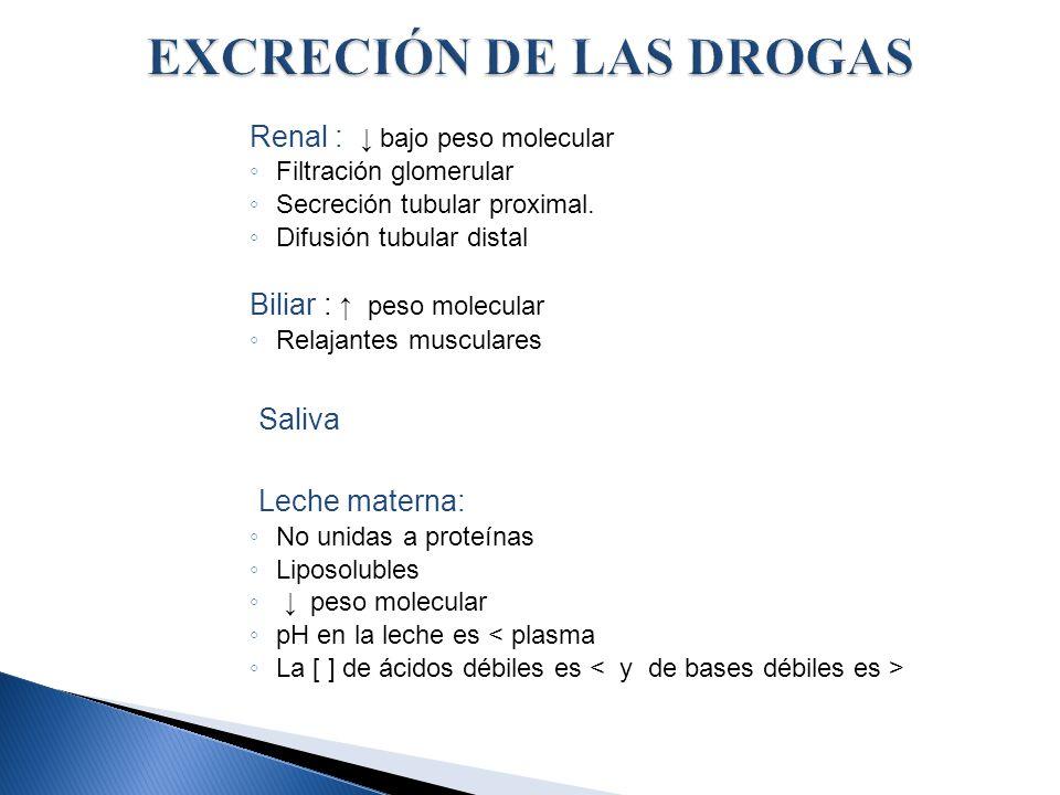 EXCRECIÓN DE LAS DROGAS