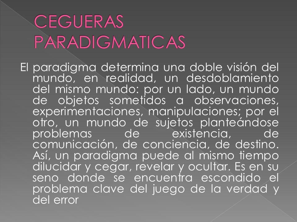 CEGUERAS PARADIGMATICAS