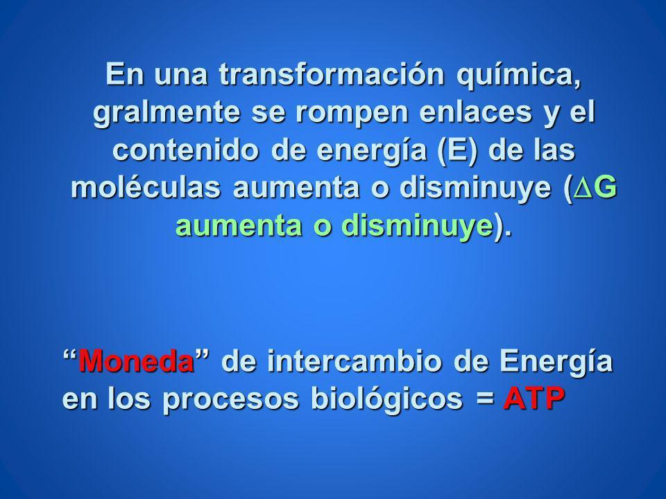 En una transformación química, gralmente se rompen enlaces y el contenido de energía (E) de las moléculas aumenta o disminuye (DG aumenta o disminuye).