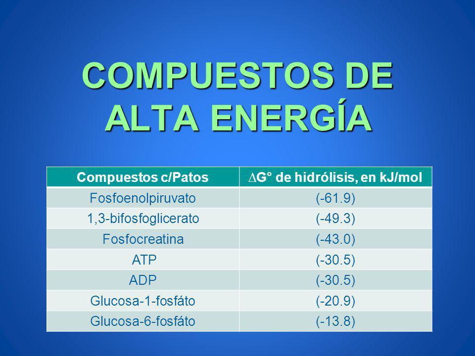 COMPUESTOS DE ALTA ENERGÍA