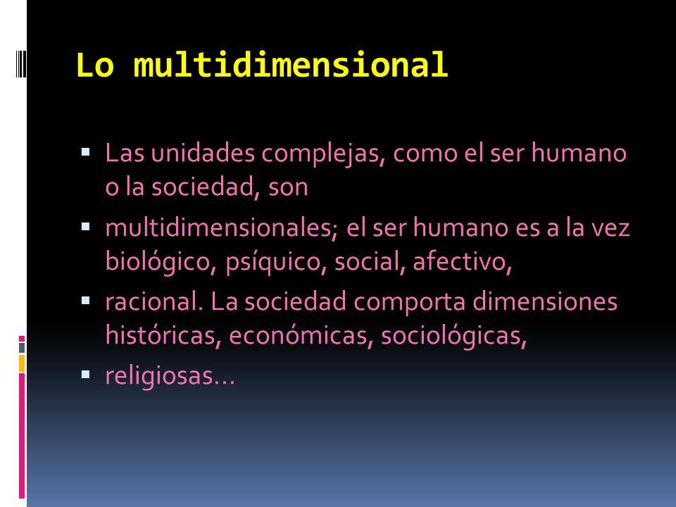 Lo multidimensional Las unidades complejas, como el ser humano o la sociedad, son.