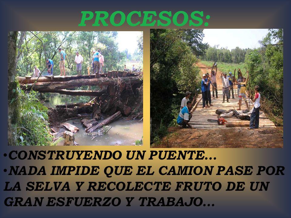 PROCESOS: CONSTRUYENDO UN PUENTE… NADA IMPIDE QUE EL CAMION PASE POR