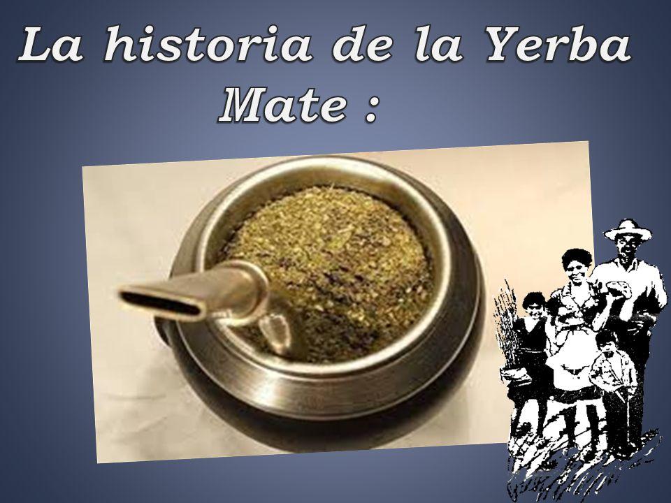 La historia de la Yerba Mate :