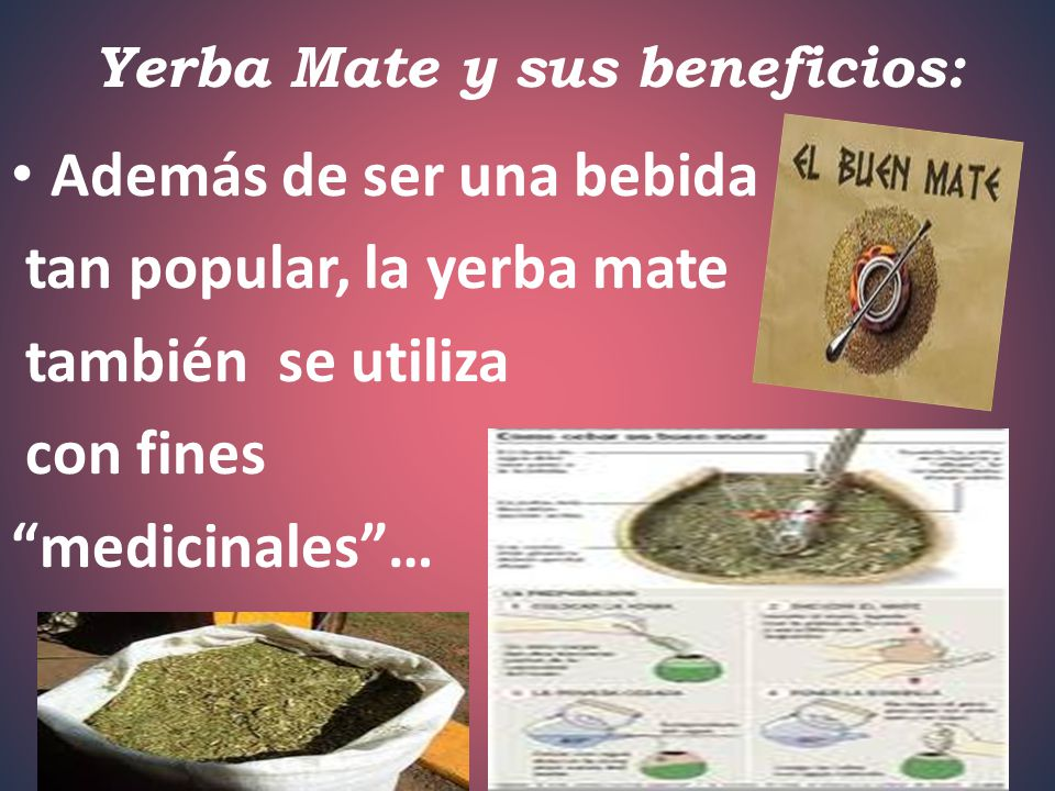 Yerba Mate y sus beneficios: