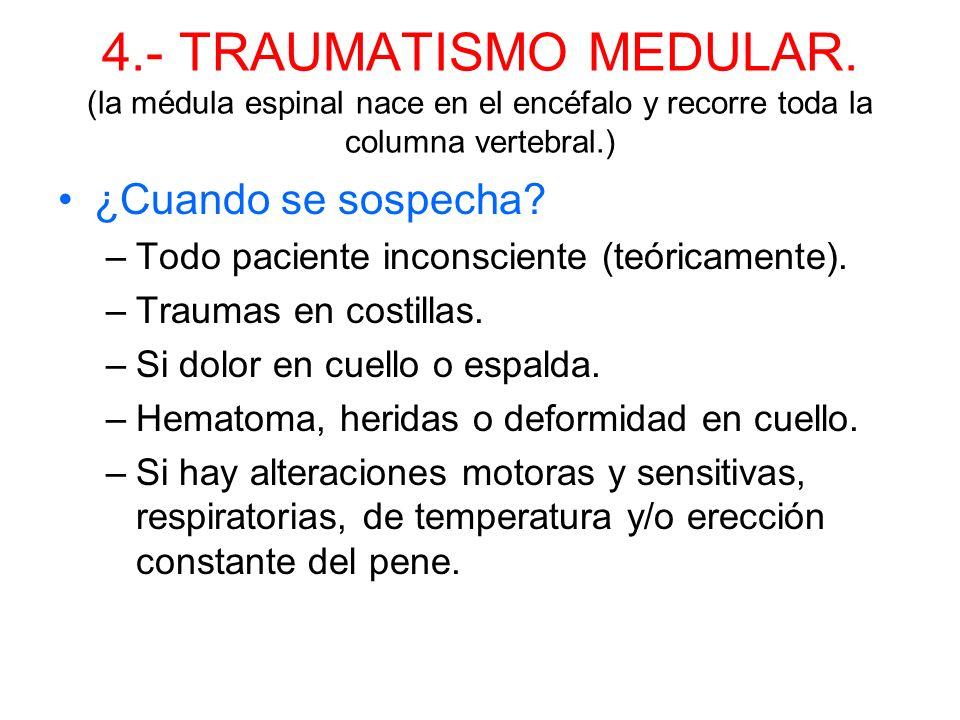 4.- TRAUMATISMO MEDULAR. (la médula espinal nace en el encéfalo y recorre toda la columna vertebral.)
