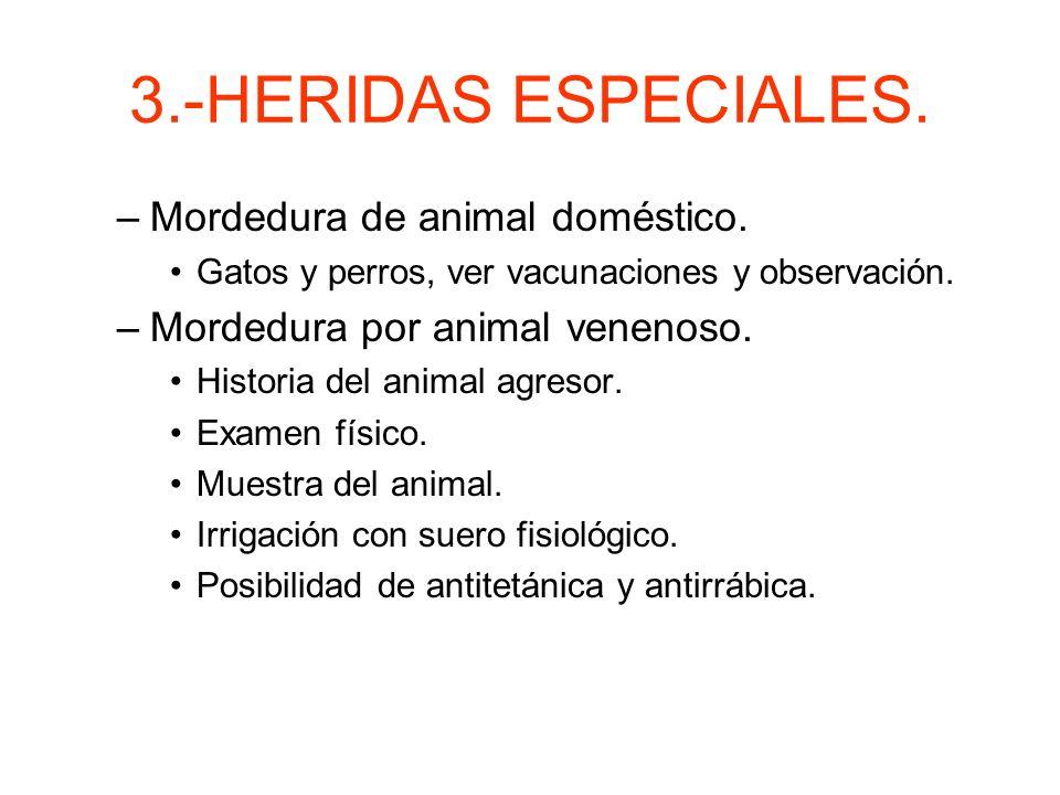 3.-HERIDAS ESPECIALES. Mordedura de animal doméstico.