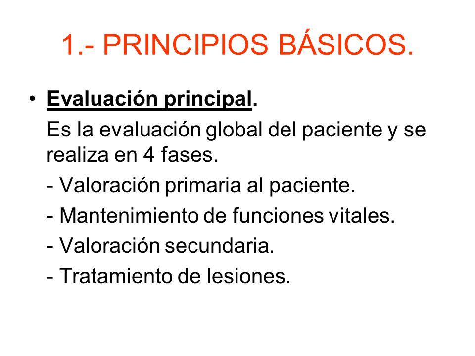 1.- PRINCIPIOS BÁSICOS. Evaluación principal.