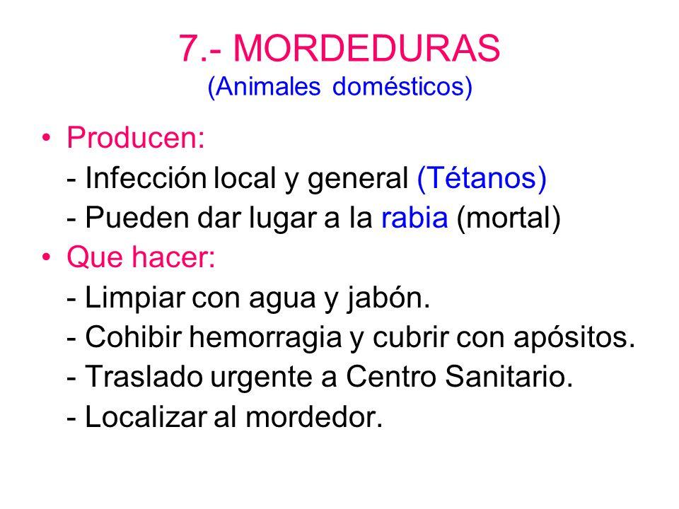 7.- MORDEDURAS (Animales domésticos)