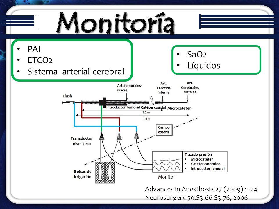 Monitoría PAI ETCO2 Sistema arterial cerebral SaO2 Líquidos