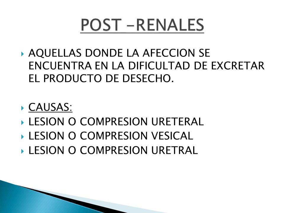 POST -RENALES AQUELLAS DONDE LA AFECCION SE ENCUENTRA EN LA DIFICULTAD DE EXCRETAR EL PRODUCTO DE DESECHO.