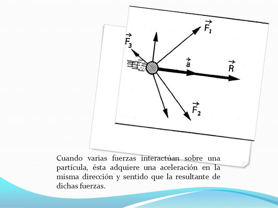 Cuando varias fuerzas interactúan sobre una partícula, ésta adquiere una aceleración en la misma dirección y sentido que la resultante de dichas fuerzas.