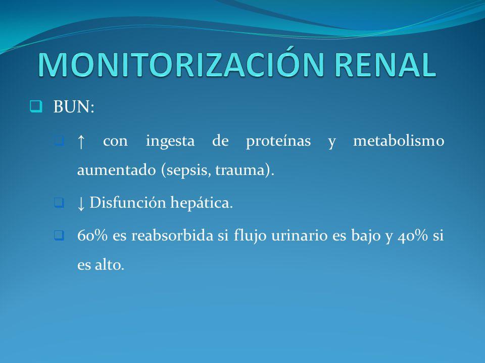 MONITORIZACIÓN RENAL BUN: