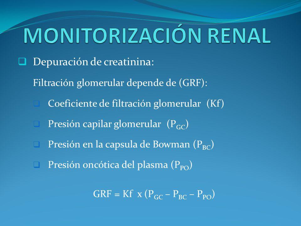 GRF = Kf x (PGC – PBC – PPO)