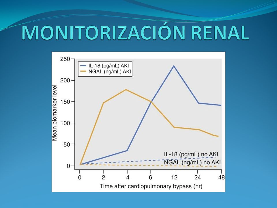 MONITORIZACIÓN RENAL (neutrophil gelatinase-associated lipocalin) platelet-activating factor and urinary sodium hydrogen exchanger isoform-3.