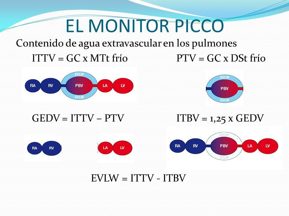 EL MONITOR PICCO