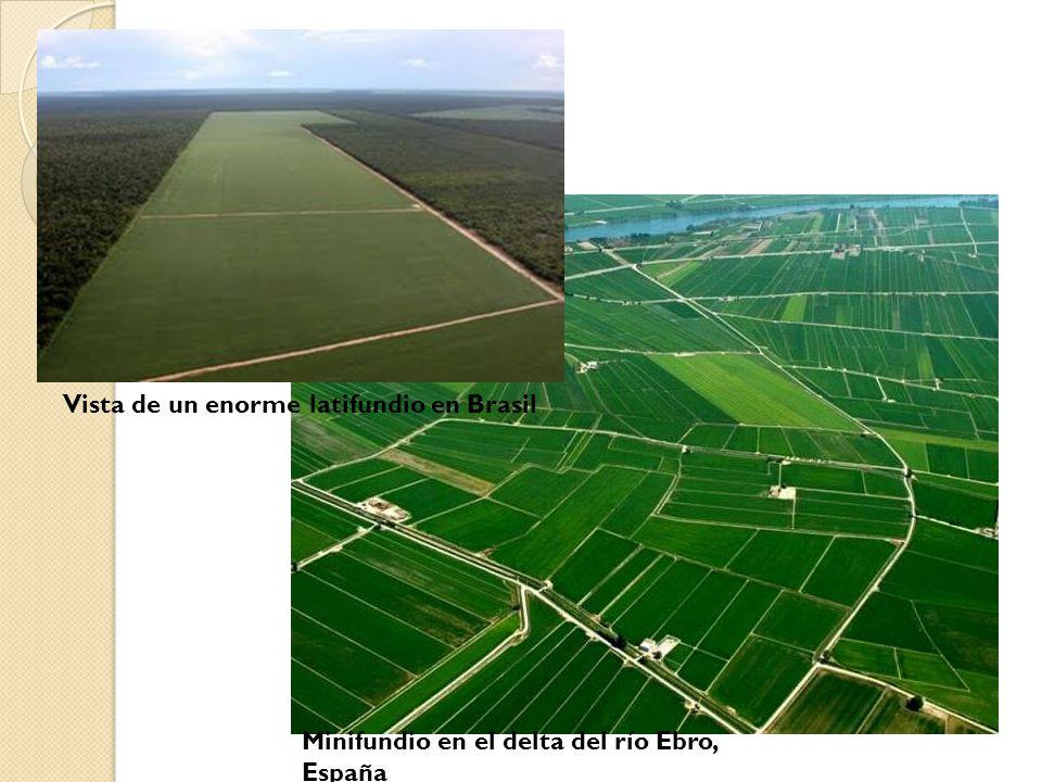 Vista de un enorme latifundio en Brasil