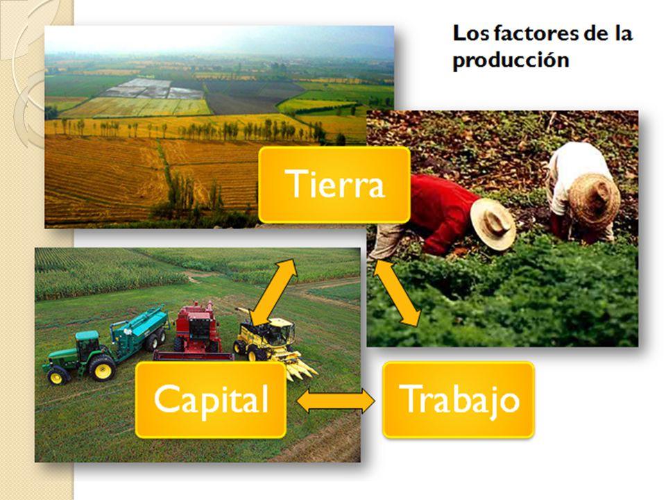Fuentes: villa-mercedes.nexolocal.com.ar