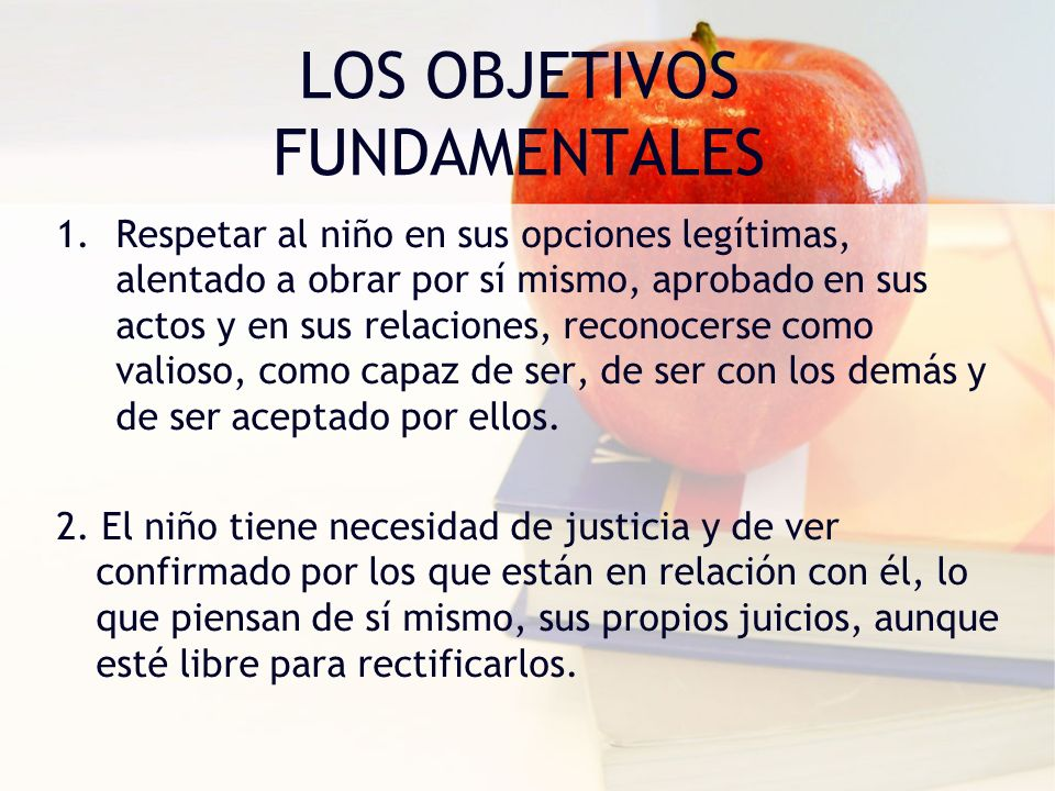 LOS OBJETIVOS FUNDAMENTALES