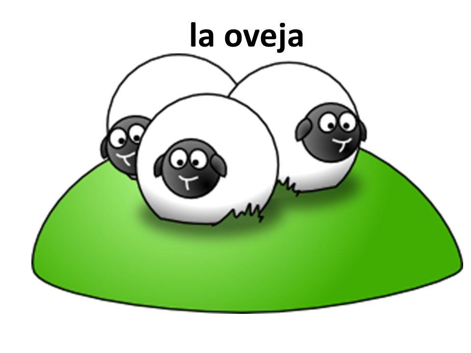 la oveja