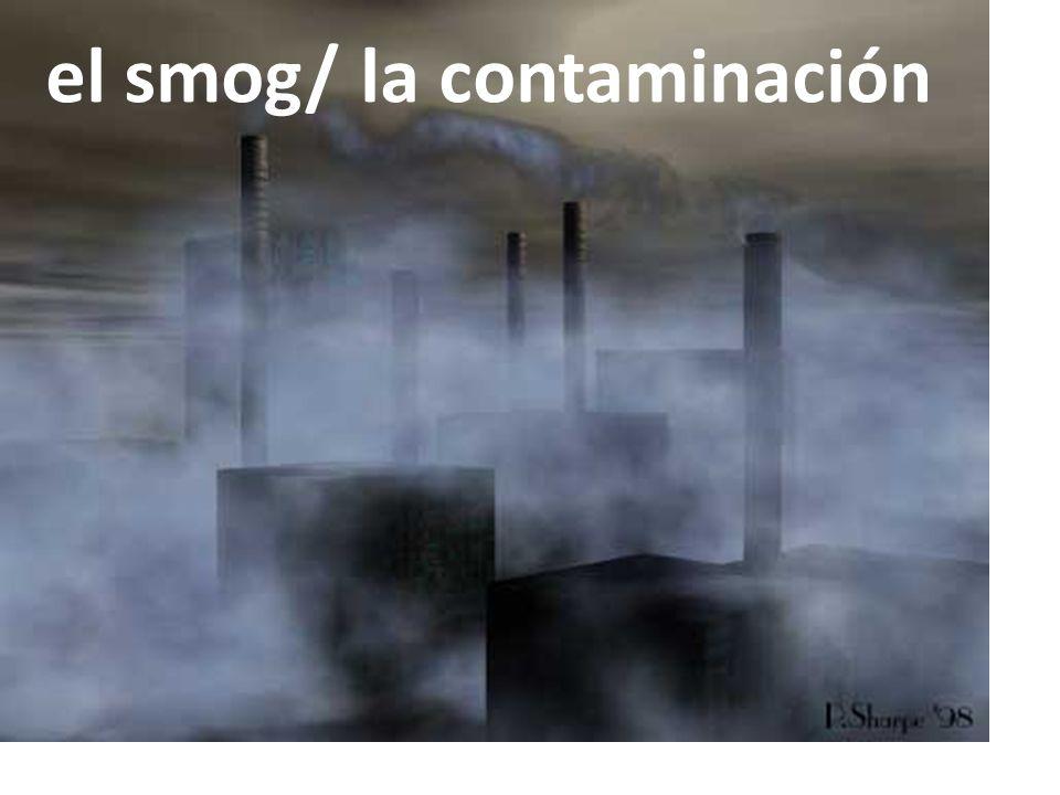 el smog/ la contaminación