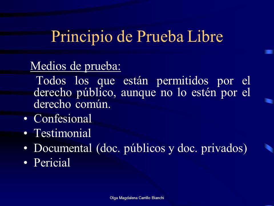 Principio de Prueba Libre