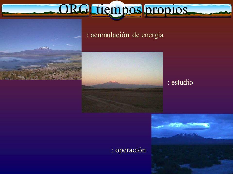 ORG: tiempos propios : acumulación de energía : estudio : operación