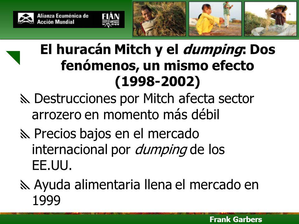 Destrucciones por Mitch afecta sector arrozero en momento más débil