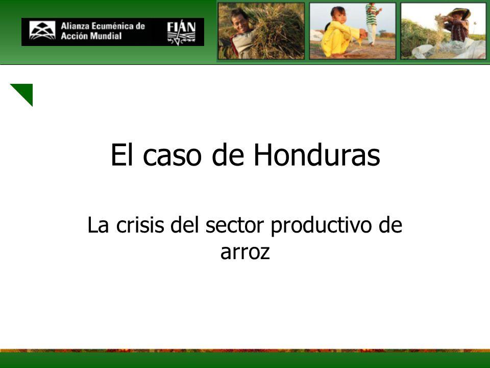 La crisis del sector productivo de arroz
