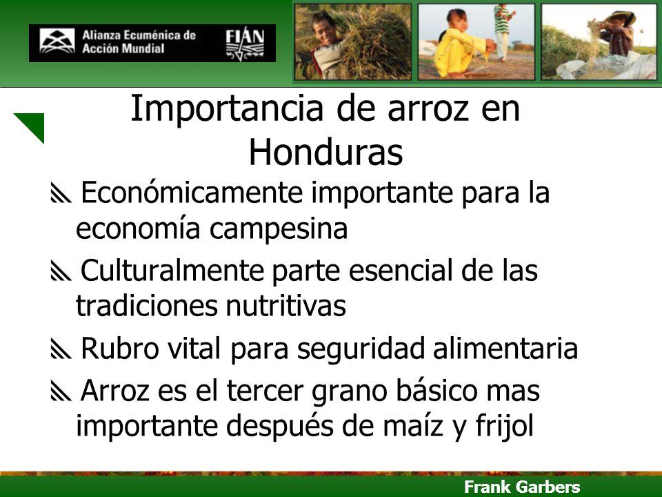 Importancia de arroz en Honduras