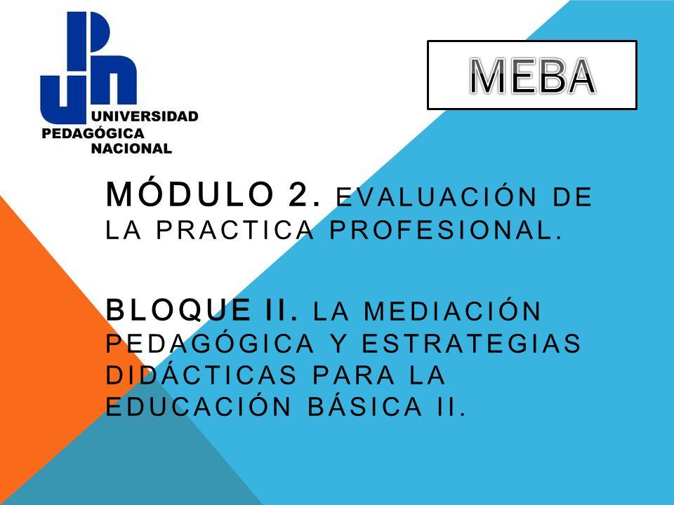 MEBA Módulo 2. Evaluación de la practica profesional.