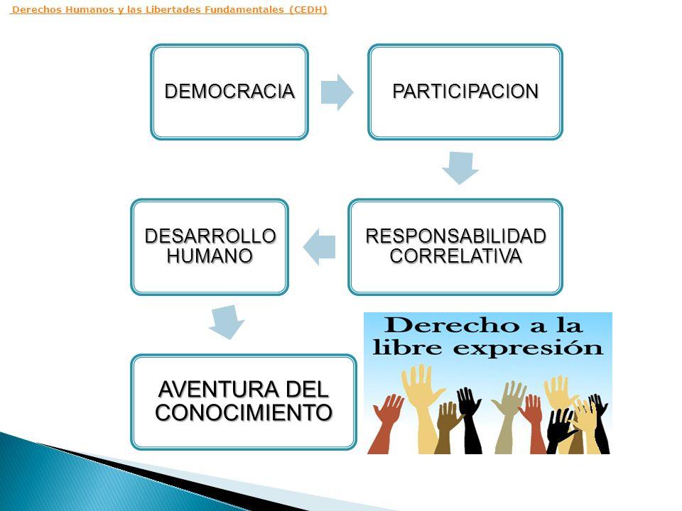 Derechos Humanos y las Libertades Fundamentales (CEDH)