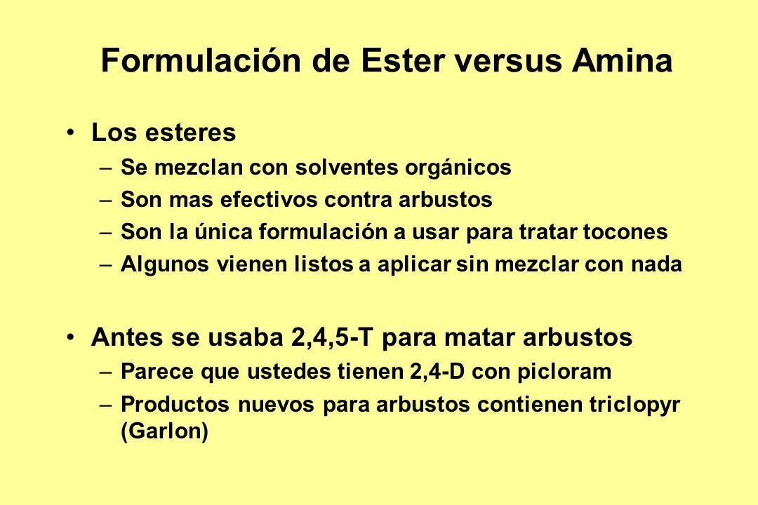 Formulación de Ester versus Amina