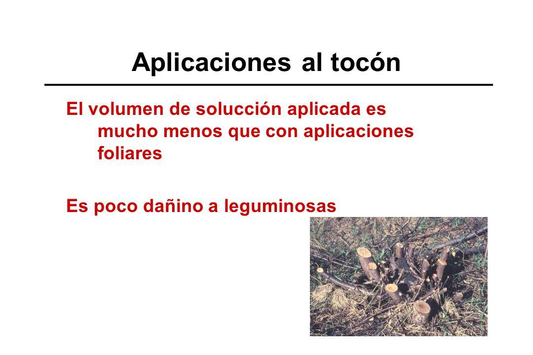 Aplicaciones al tocón El volumen de solucción aplicada es mucho menos que con aplicaciones foliares.