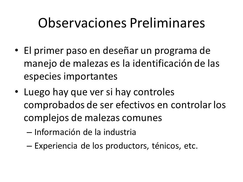 Observaciones Preliminares