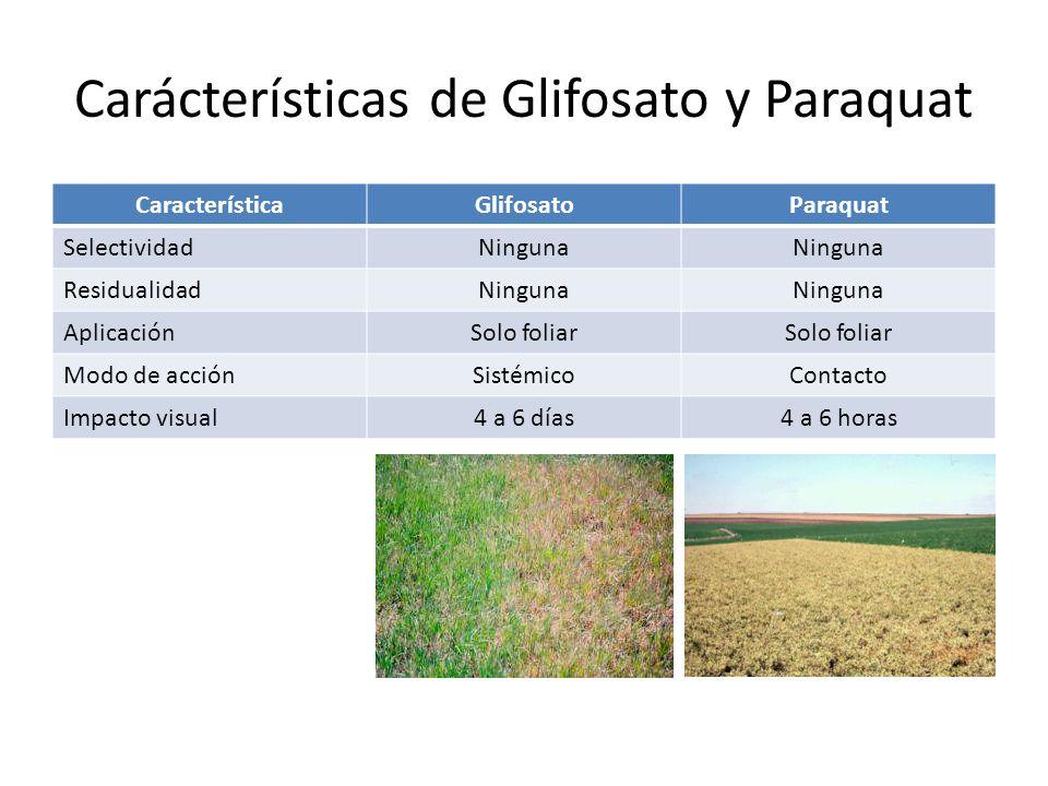 Carácterísticas de Glifosato y Paraquat