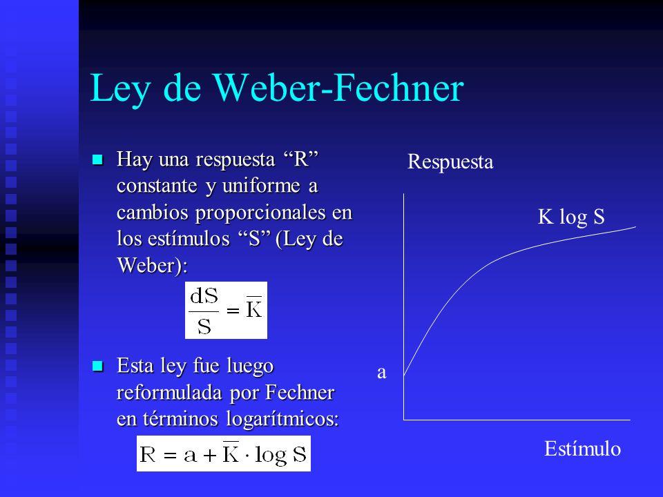Ley de Weber-Fechner Hay una respuesta R constante y uniforme a cambios proporcionales en los estímulos S (Ley de Weber):