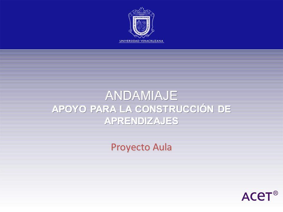 ANDAMIAJE APOYO PARA LA CONSTRUCCIÓN DE APRENDIZAJES
