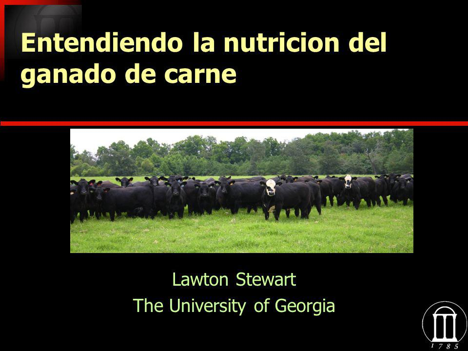 Lawton Stewart The University of Georgia