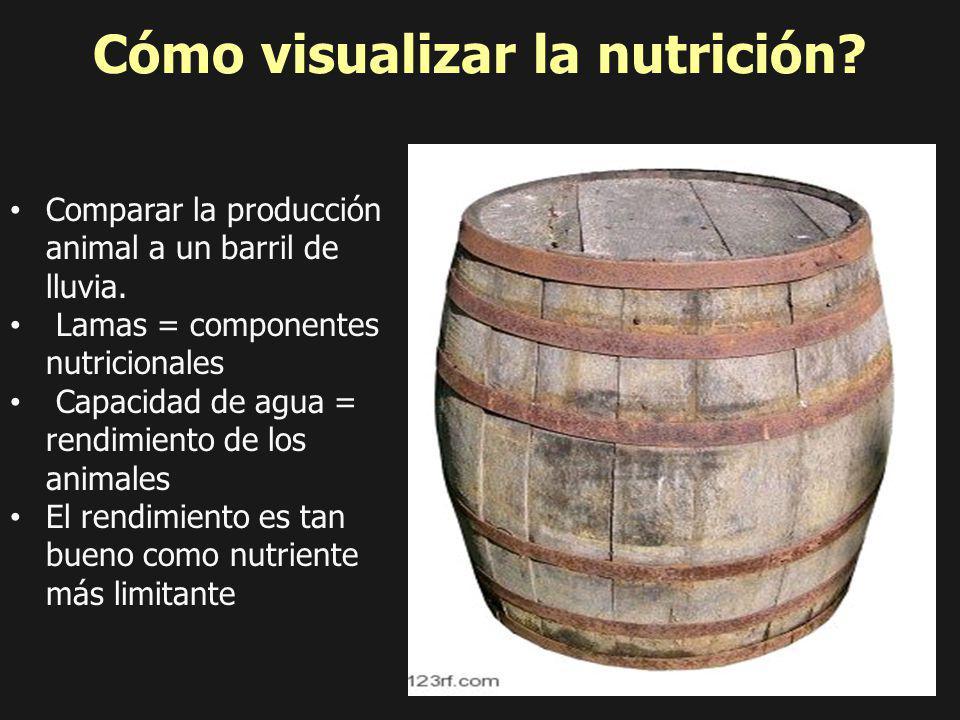 Cómo visualizar la nutrición