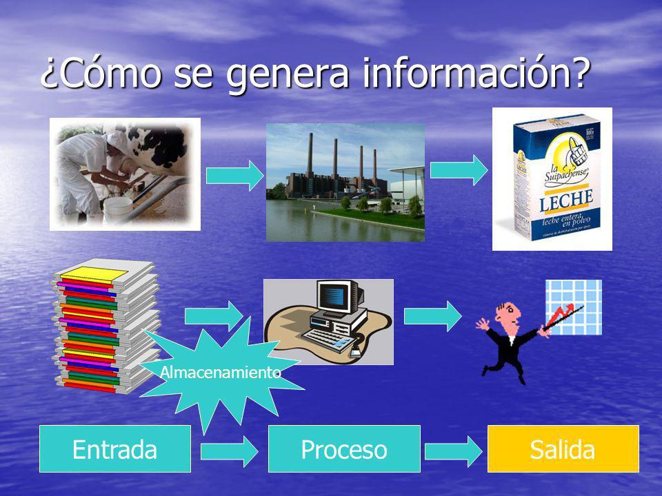 ¿Cómo se genera información