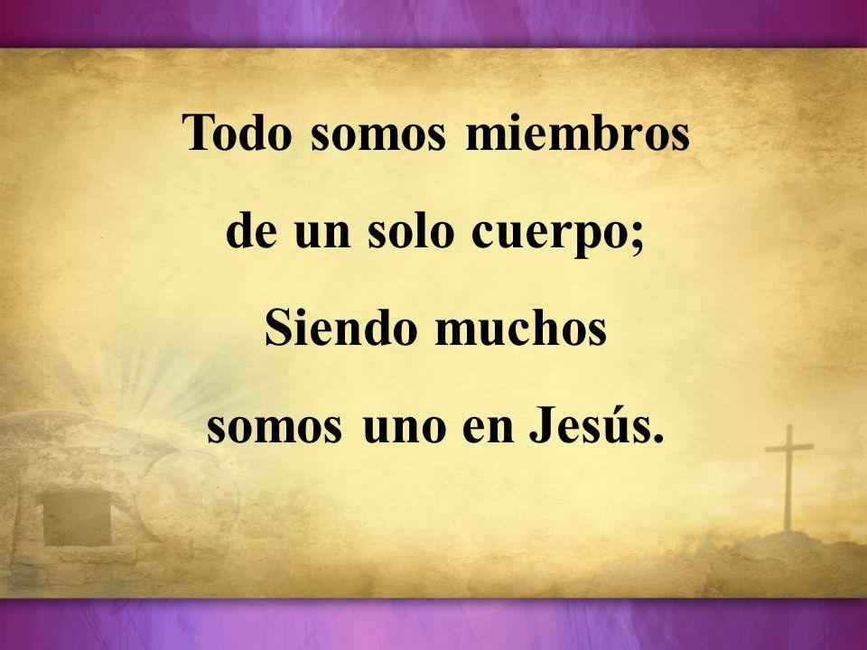 Todo somos miembros de un solo cuerpo; Siendo muchos somos uno en Jesús.