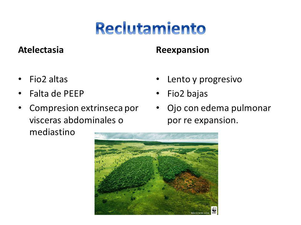 Reclutamiento Atelectasia Reexpansion Fio2 altas Falta de PEEP