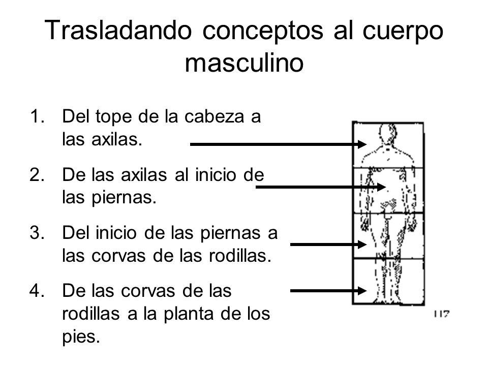 Trasladando conceptos al cuerpo masculino