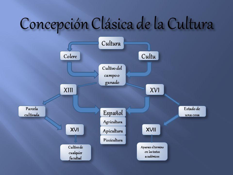 Concepción Clásica de la Cultura
